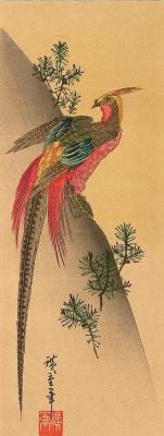 Utagawa Hiroshige. Chinese Golden pheasant on a hillside