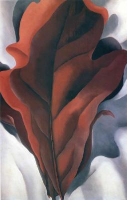 Джорджия О'Киф. Большие темно-красные листья на белом