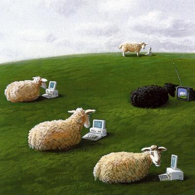 Михаэль Сова. Овцы с ноутбуками