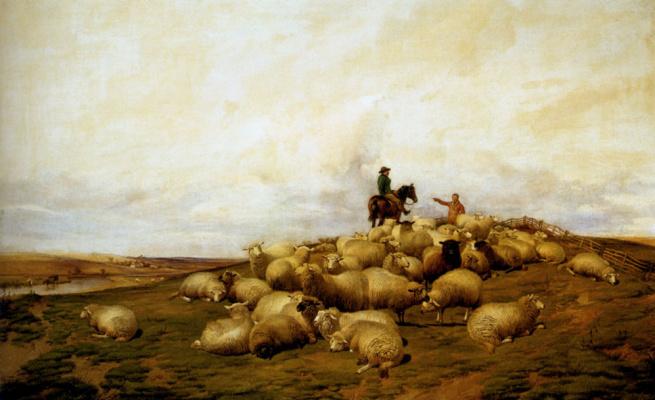 Томас Сидней Купер. Пастух