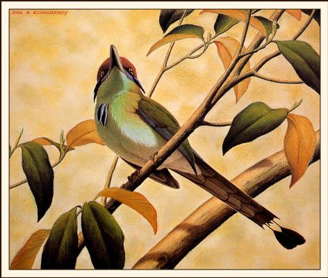 Дон Эккелберри. Птица на ветке