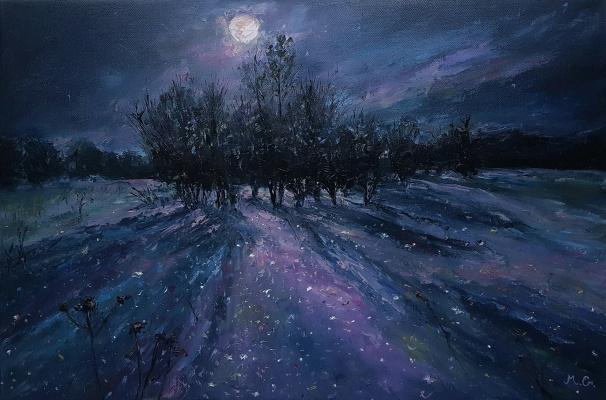 Grigory Yaroslavovich Malashin. Moon scattering