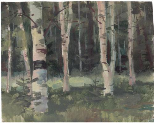 Arkady Pavlovich Laptev. Birch