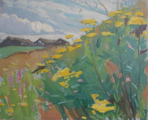 Nina Vasilievna Sedova. Yellow flowers