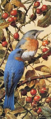 Карл Брендерс. Синяя птица