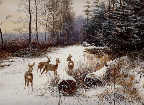 Питер Верстаппен. Природа 60