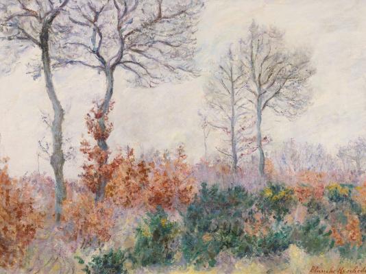 Бланш Ошеде-Моне. Деревья осенью (Эффект зимы)