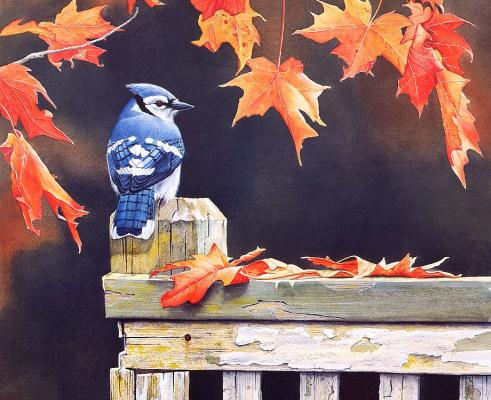 Сьюзан Бордет. Осеннее великолепие