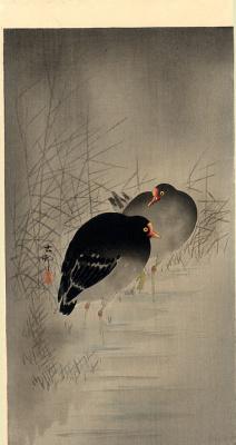 Охара Косон. Птицы 62