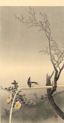 Охара Косон. Птицы 69