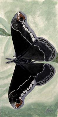 Artashes Vladimirovich Badalyan. Butterflies-11 - x-hardboard-m - 40x20