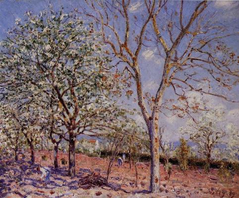 Альфред Сислей. Сливы и ореховые деревья весной