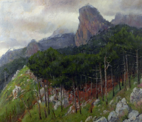 Vladimir Vladislavovich Vidyaykin. Bear mountain