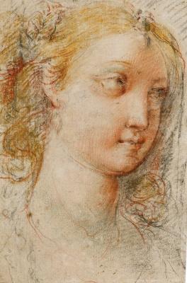 Cesari Giuseppe (Cavalier d'Arpino). Head of a young woman.