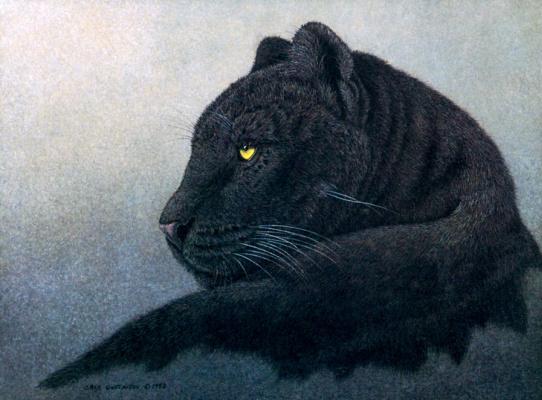Грег Густавсон. Черная пантера