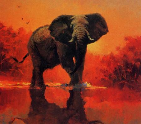 Джон Сватслей. Слон