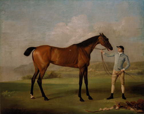 George Stubbs. Long-legged Molly and her jockey