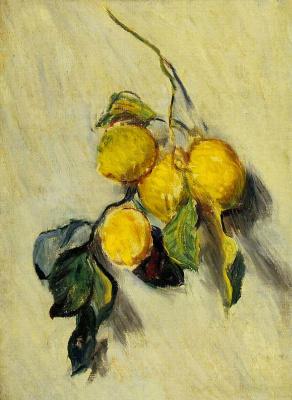 Клод Моне. Ветка лимонного дерева