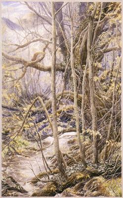 Алан Ли. Старый лес