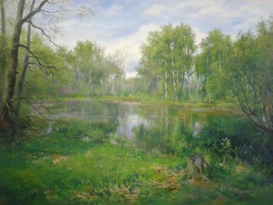 Sergey Vladimirovich Vorotilov. Forest Lake