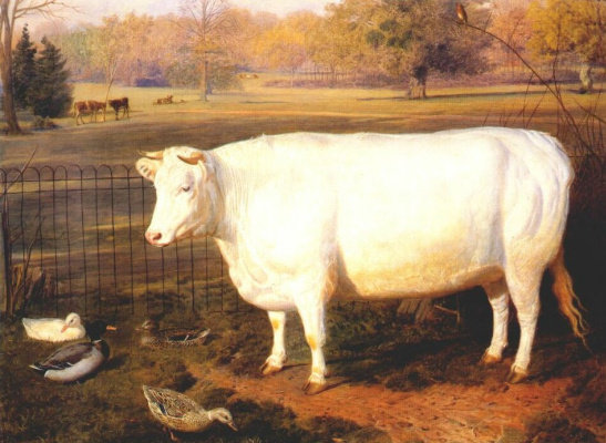 Фридрих Кейл. Корова