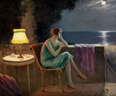 Dolphin Angolra. Young woman on the terrace by the sea in the moonlight.