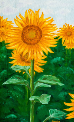 Arina Yuryevna Yastrebova. Sunflower