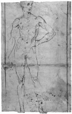 Raphael Sanzio. Standing Nude