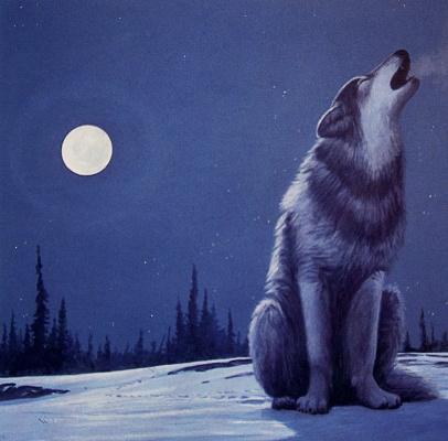 Грэм Шоу. Волк