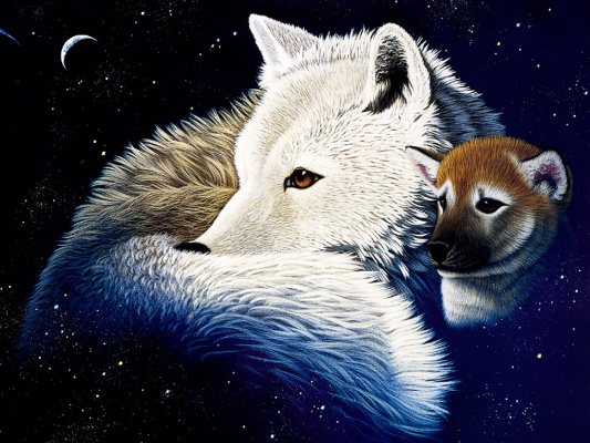 Уильям Шиммел. Волк