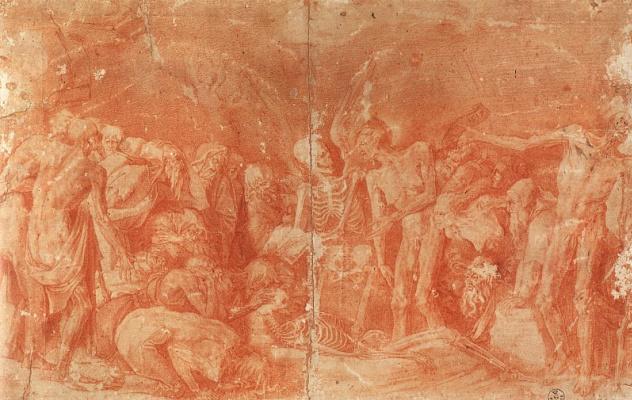 Fiorentino Rosso. Skeleton