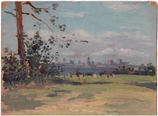 Arkady Pavlovich Laptev. Far meadow