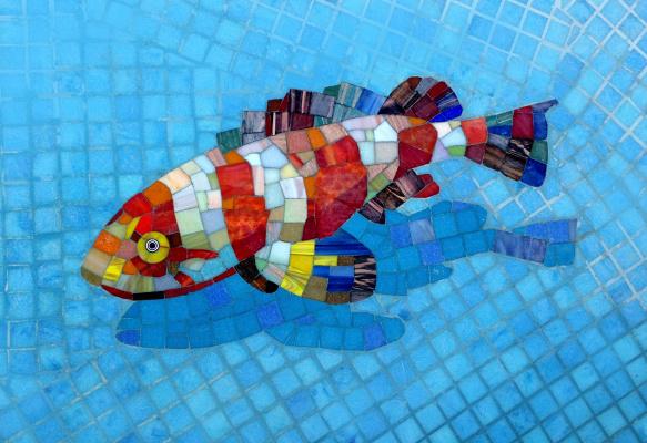 Constantine Socks. Pool decor