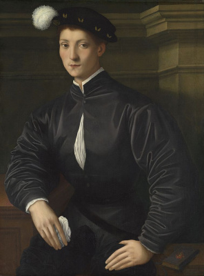Jacopo Pontormo. Portrait of Martelli