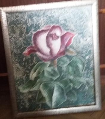 Nikolay Zverev. Rose flower