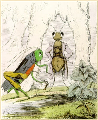 Чарльз Беннетт. Стрекоза и муравей