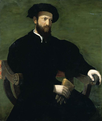 Francesco Salviati. Portrait of a man