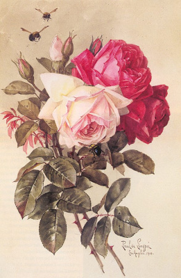 Лонгпр. Букет роз