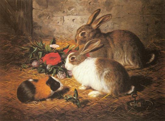 Альфред Ричардсон Барбер. Два кролики и морская свинка