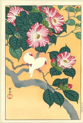 Ohara Koson. Camellia drawing