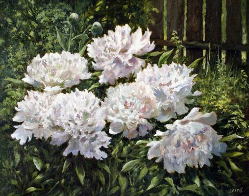 Сергей Владимирович Дорофеев. Corner of the May Garden