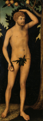 Lucas the Younger Cranach. Adam