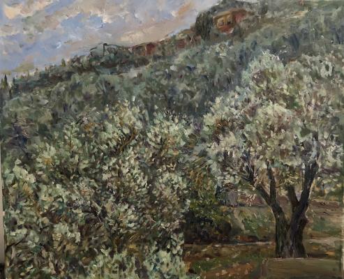 Victoria Marshakova. Olives at sunset after rain