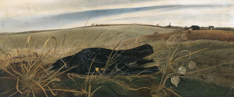 Andrew Wyeth. Winter fields