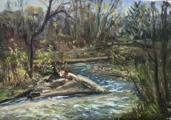 Виктория Мальшакова. The river is noisy