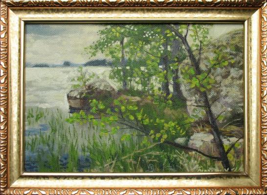 Alexander Nikolaevich Bezrodny. The lake.lump.