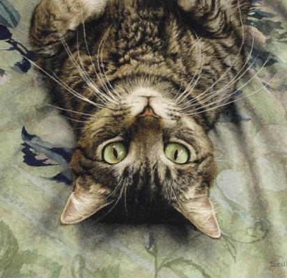 Росс Суилен. Кошка