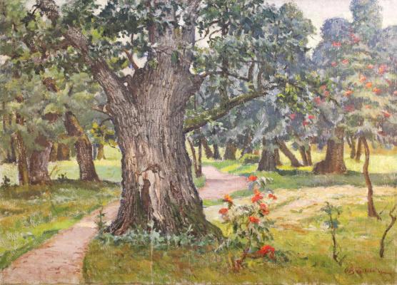 Александр Васильевич Байдуков. Старое дерево