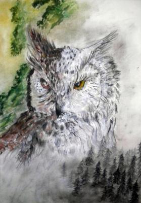 Julia Sergeevna Bochkareva. Owl