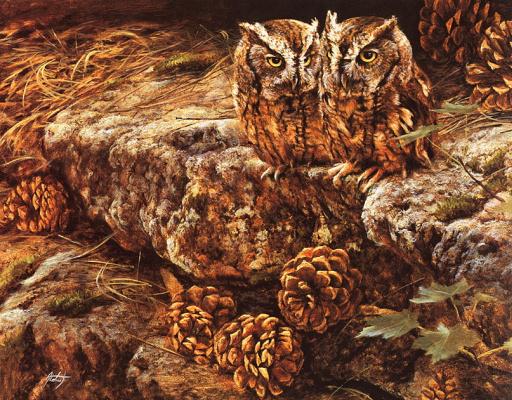 Эдвард Олдрич. Пара ушастых сов с сосновыми шишками